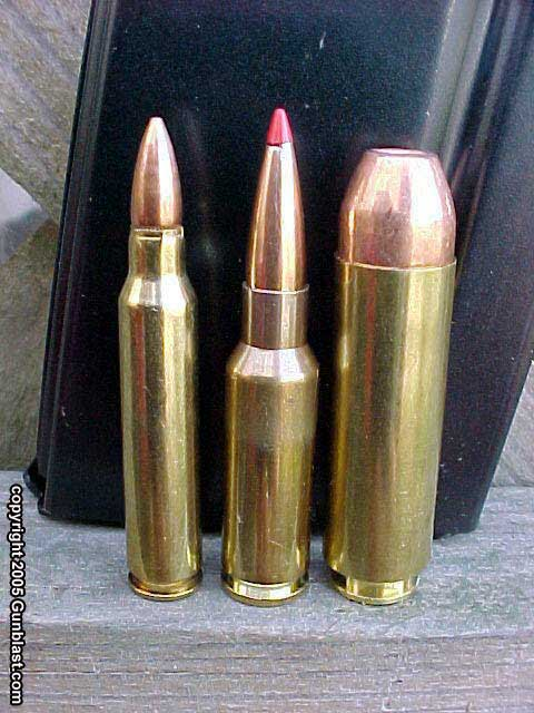 Left to right: .22, 5.7x28mm, .223, .30-06, .50 Beowulf ...