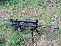 Bushmaster's New
