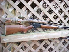 Rogue Rifle Company's
