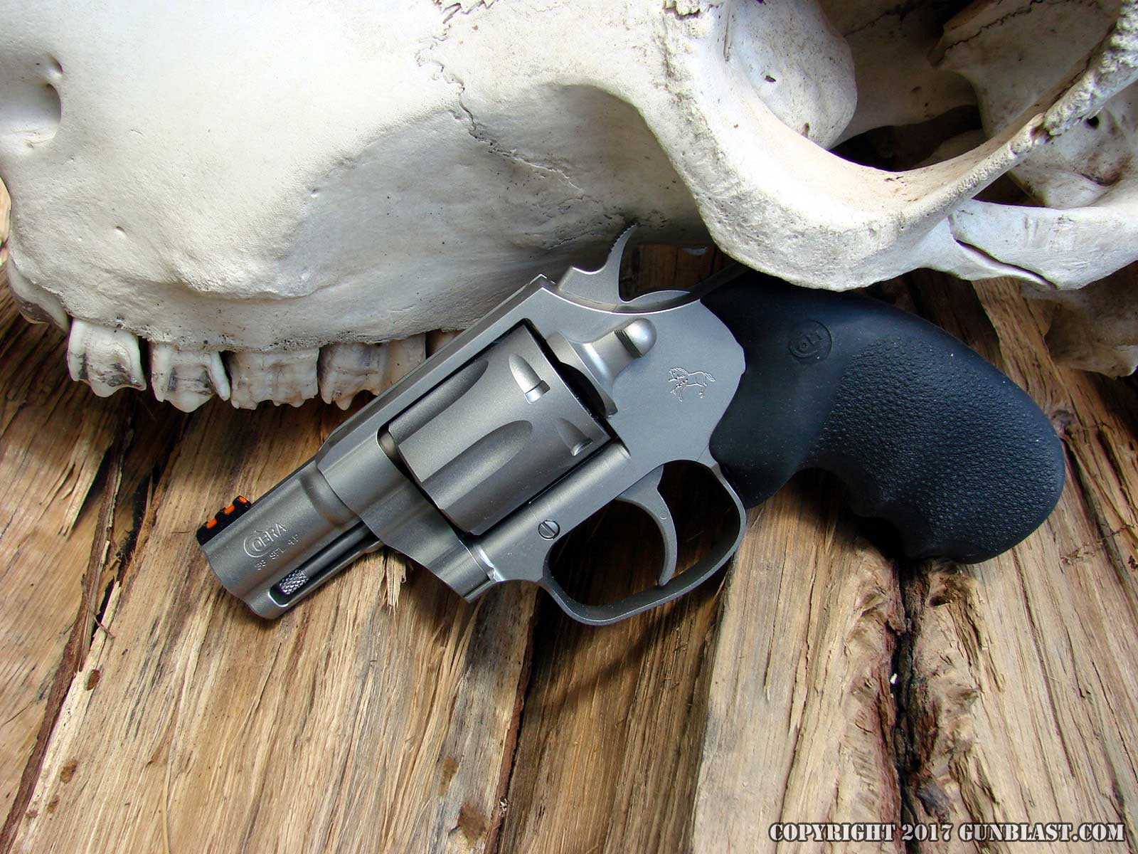 Colt's New Stainless-Steel Double-Action 38 Special Cobra
