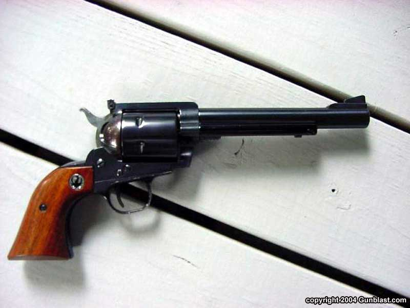 Ruger Blackhawk  44 Magnum