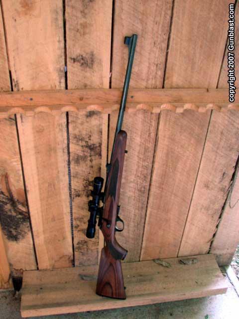 22+rifle+bolt+action