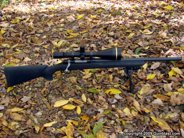 ruger 308 bolt action rifle