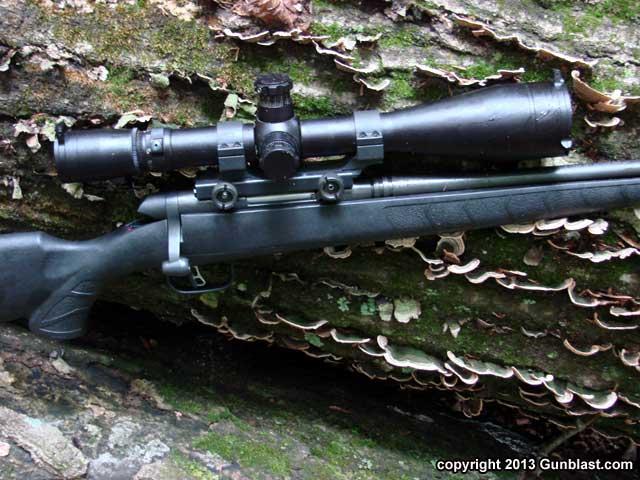 SavageB-MAG 17 Winchester Super Magnum Rimfire Bolt-Action Rifle