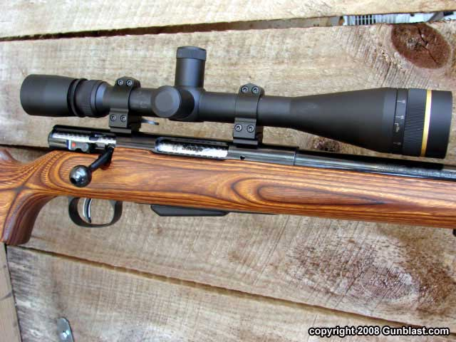 Savage Model 25 223 Caliber
